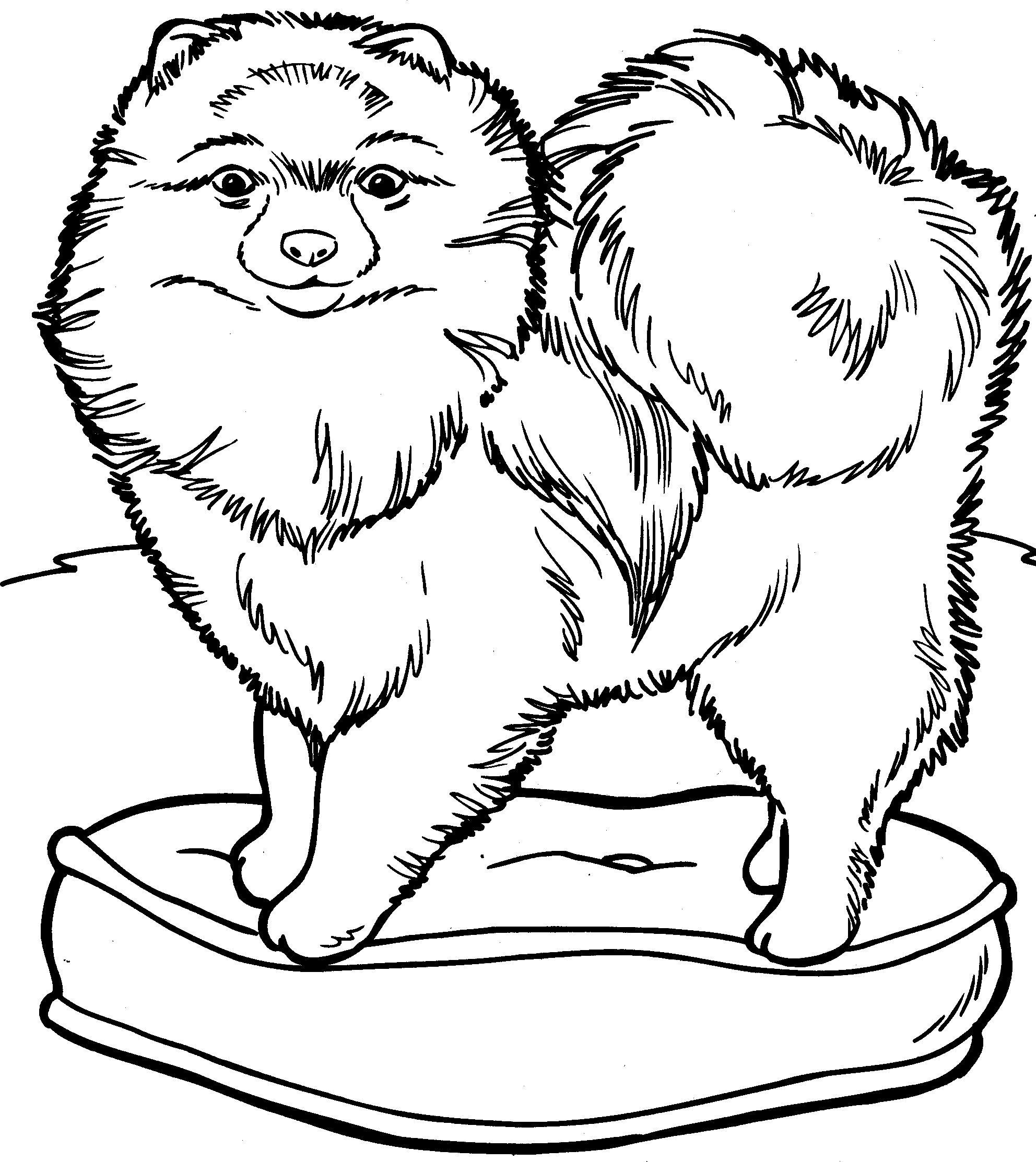 Kleurplaat Honden Kleurplaat 8868 Kleurplaten Honden Huisdieren