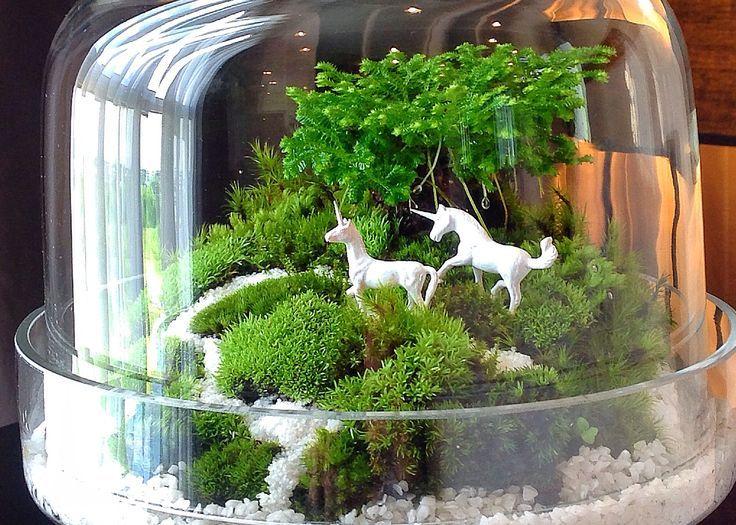 so cute might try making a terrarium scene the noble unicorn pinterest petits jardins. Black Bedroom Furniture Sets. Home Design Ideas