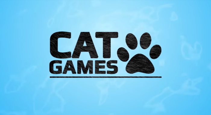 Learn The Truth About Fish Game For Cats In The Next 60