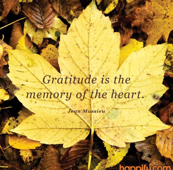#grattitude thanks to happify!