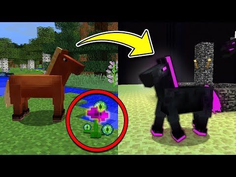 Minecraft Tutorial How To Make A Rabbit Hutch Youtube Mine All