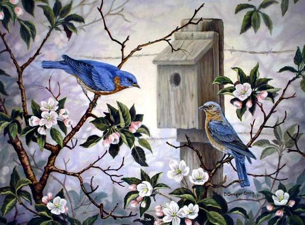 Bird painting by Deb Gengler-Copple