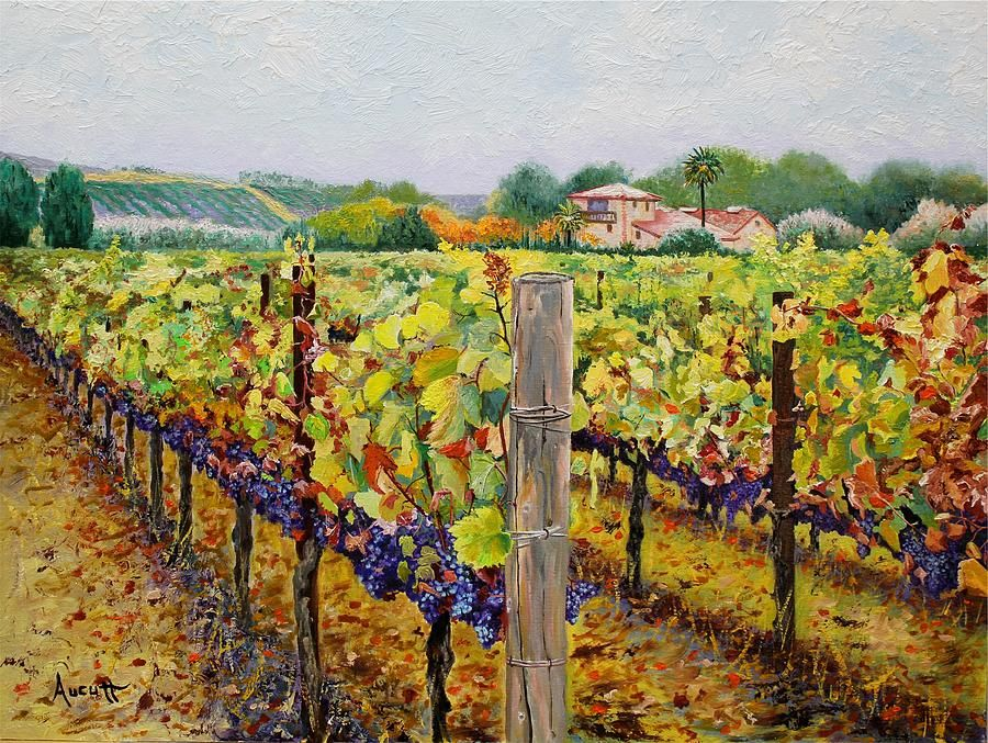 Vineyard Painting Google Search Painting Class