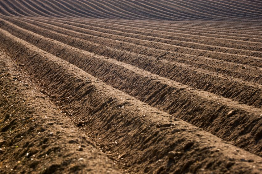 New research: synthetic nitrogen destroys soil carbon, undermines soil health