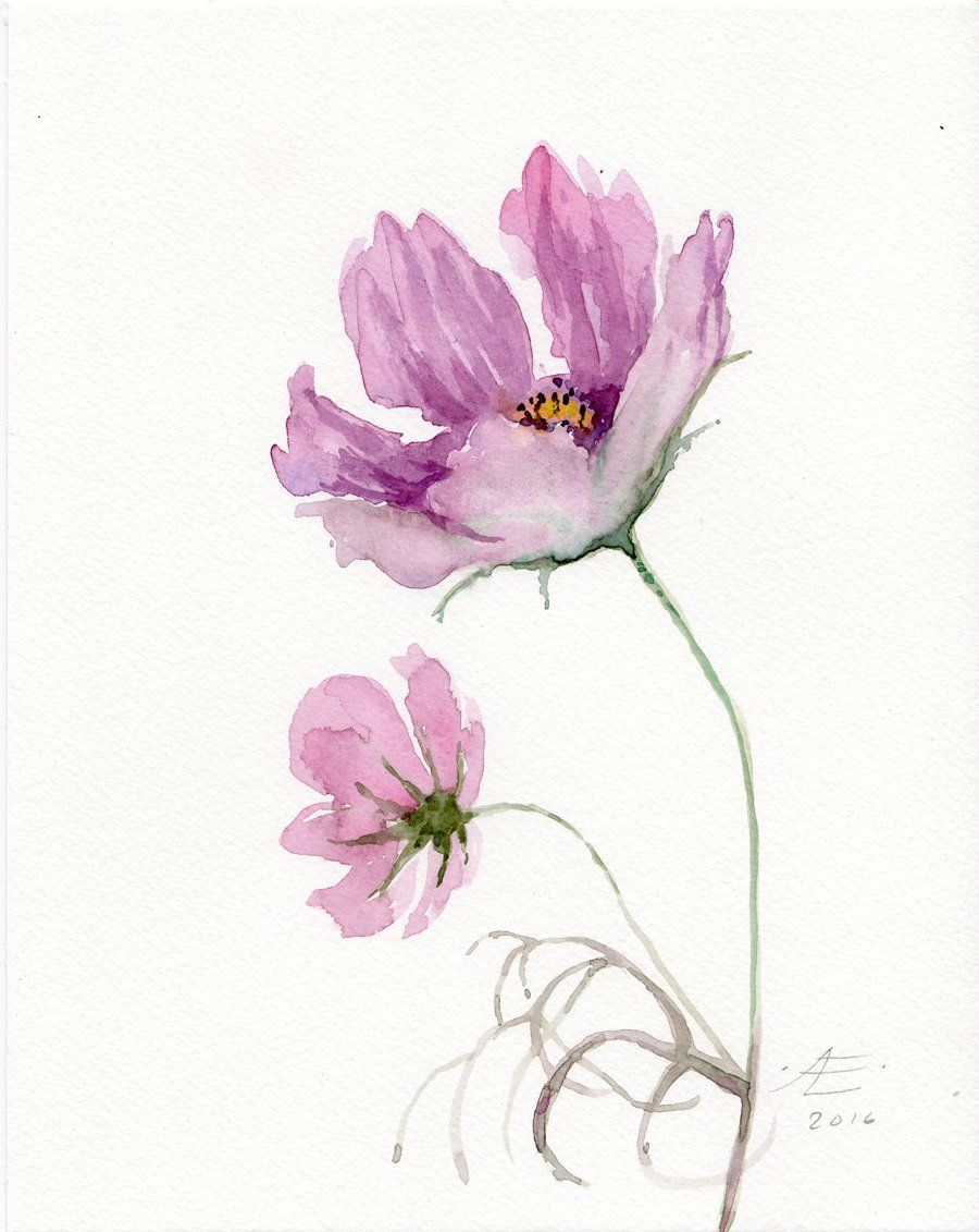 Cosmos Fleurs Aquarelle Originale Rose Fleur Peinture Etsy