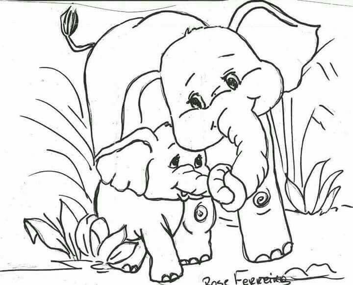 Elefante e filhote Bilder