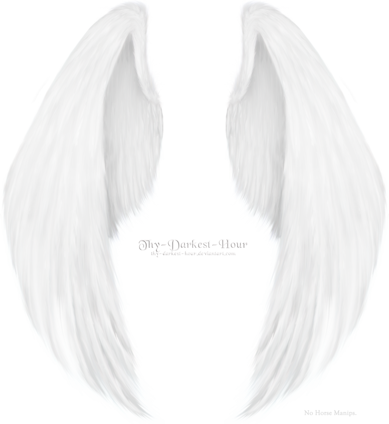 Furred Feathered Wings White PNG By Thy darkest hour