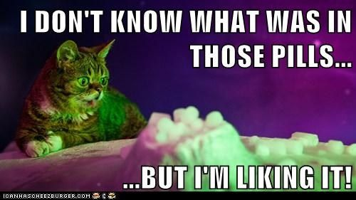 Doesn't look like it was xanax…  #caturday