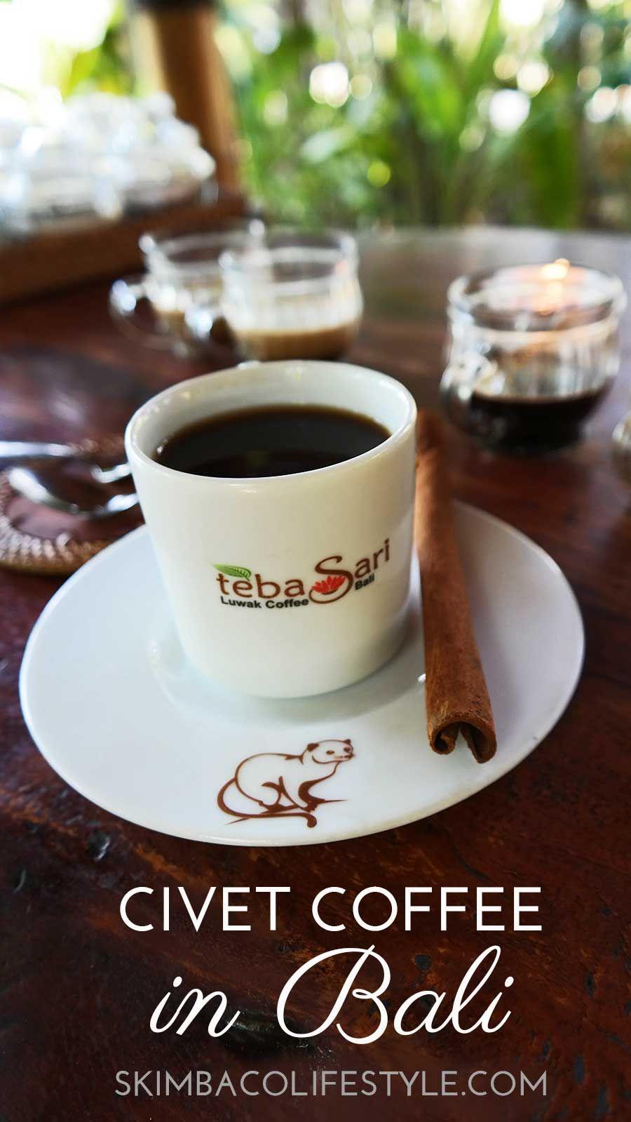 Civet Coffee Tasting & Visiting Teba Sari Farm in Bali