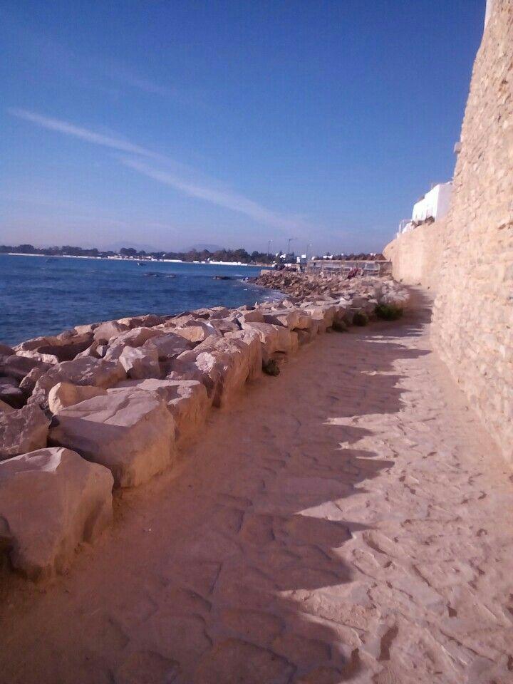 Hammamet الحمامات A Gouvernorat De Nabeul Tunesien