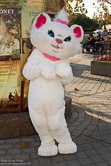 She is in France in Epcot. Marie from Aristocats. My Marie loves her!