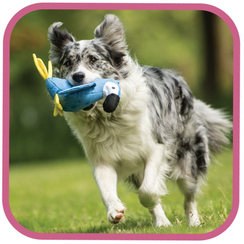 We Love These Super Tough Beco Toys That Are Good For The