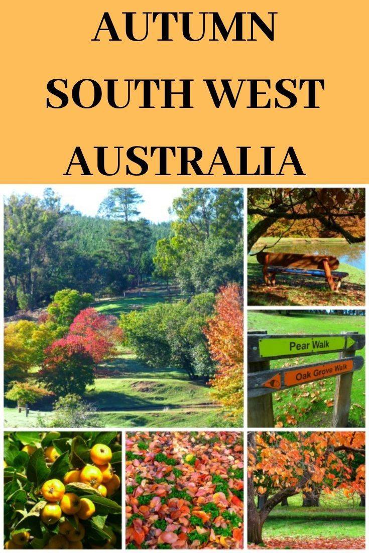 7 Things I love about Autumn in South West Australia #autumncolours