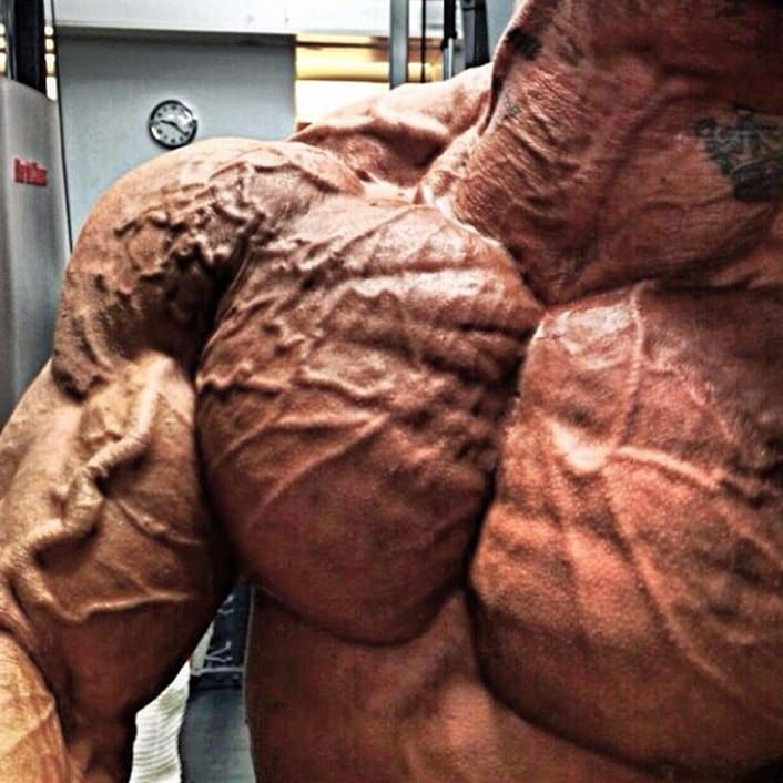 neck #veins #man #vascularity #muscle # cuello #venas #vascular ...