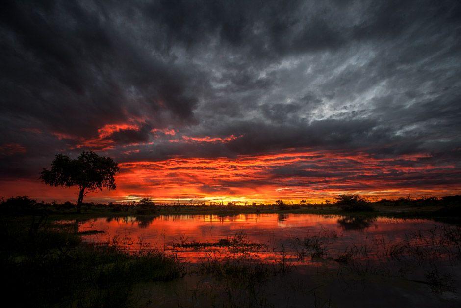 Chitabe Sunrise Over The Shallow Floodplains Of The Amazing Okavango Delta Okavango Delta Safari Lodge African Wildlife