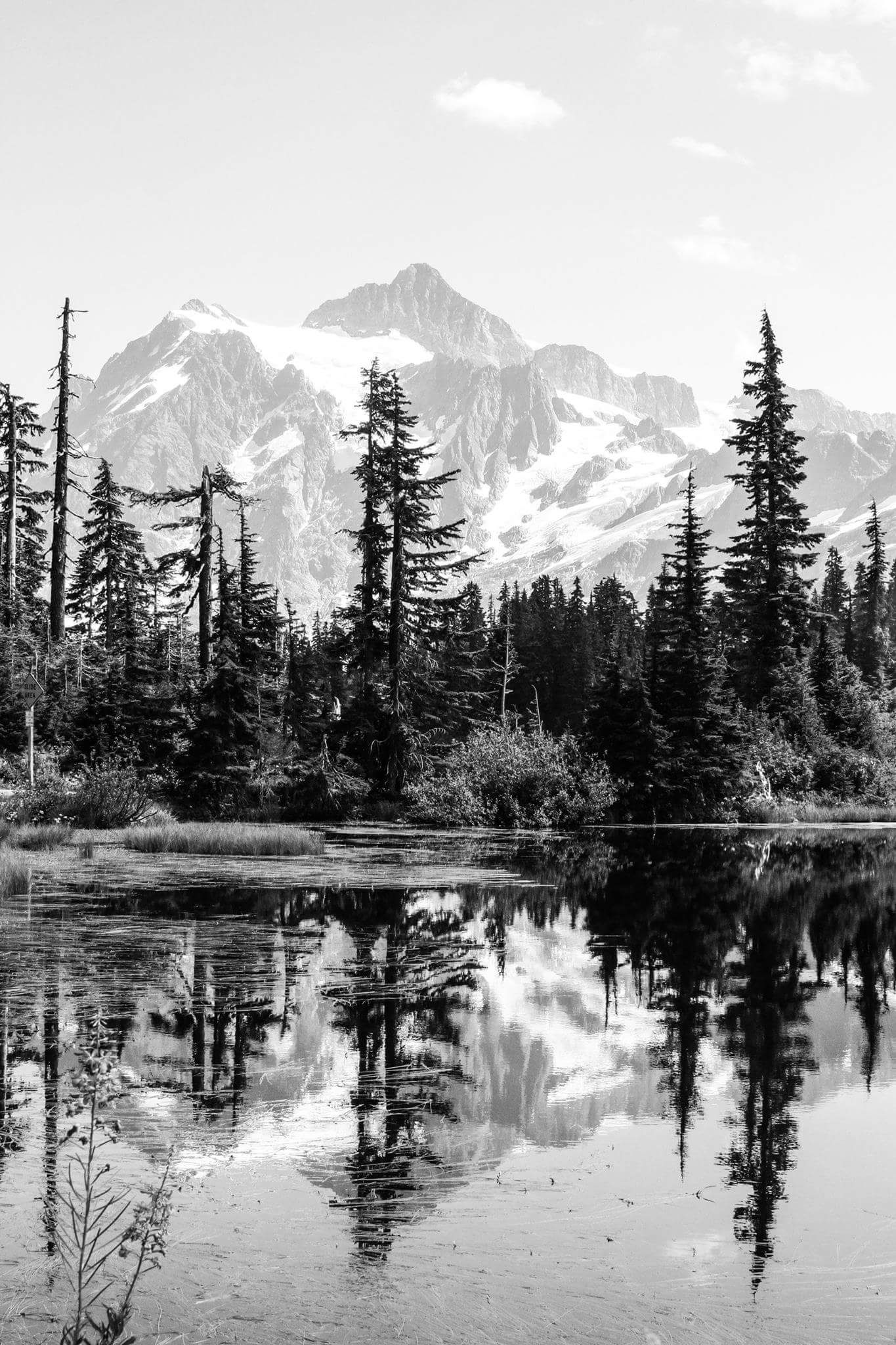 Mt Baker Washington taken by Tyler Robinson [1365X2048] is part of Landscape pencil drawings -