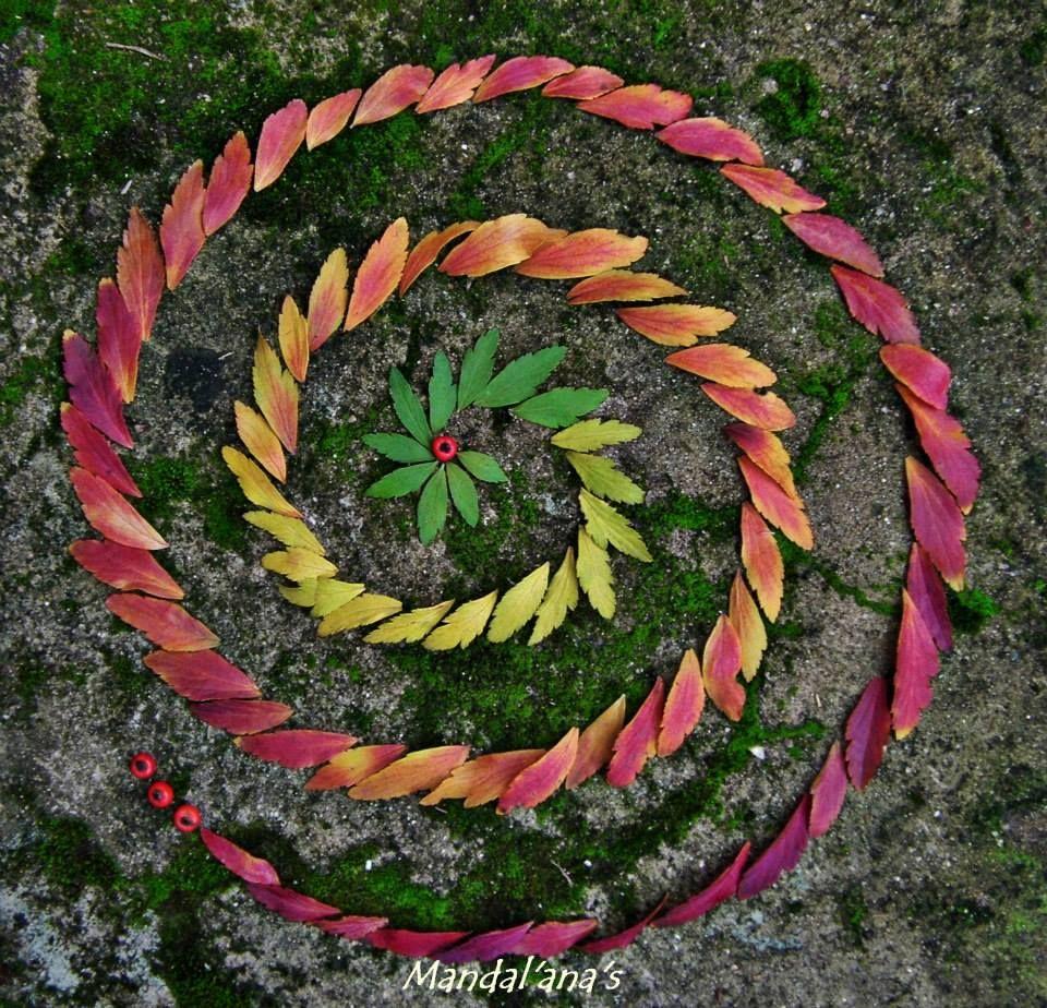 Voiceofnature amazing mandalas by mandal ana s mandala pinterest mandalas land art and - Mandala nature ...