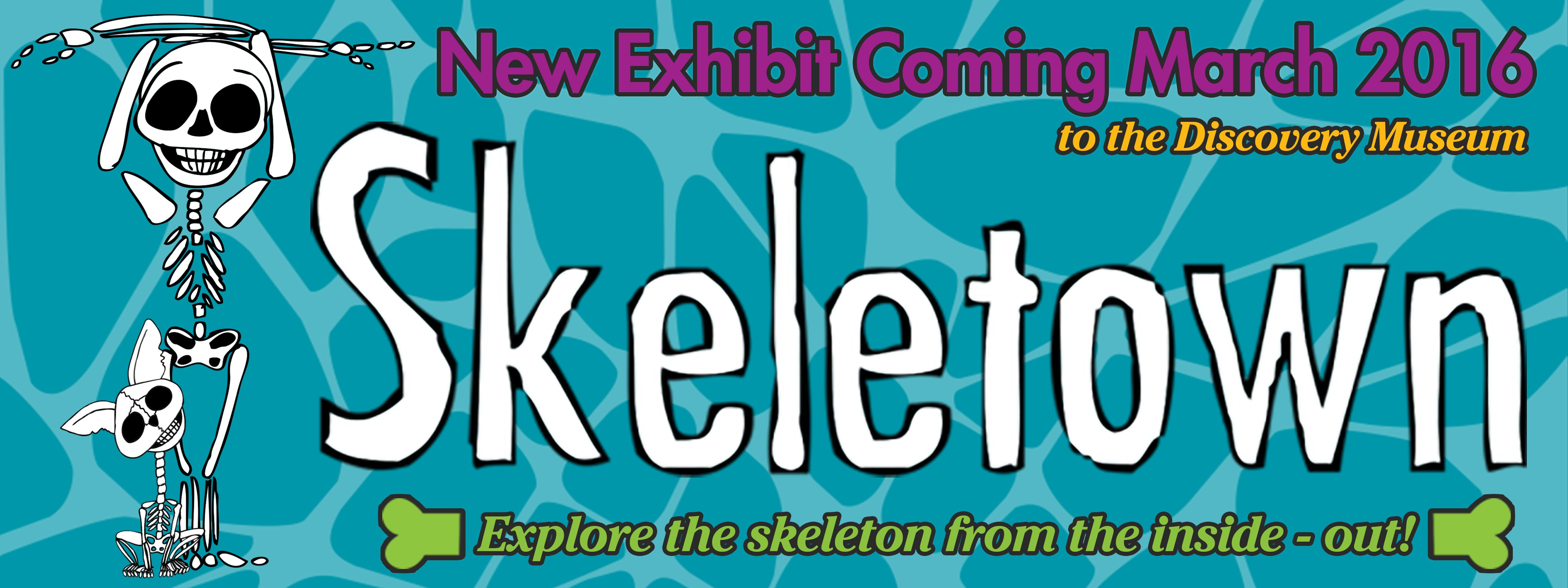 skeletown coming to the discovery museum march 5 discovery