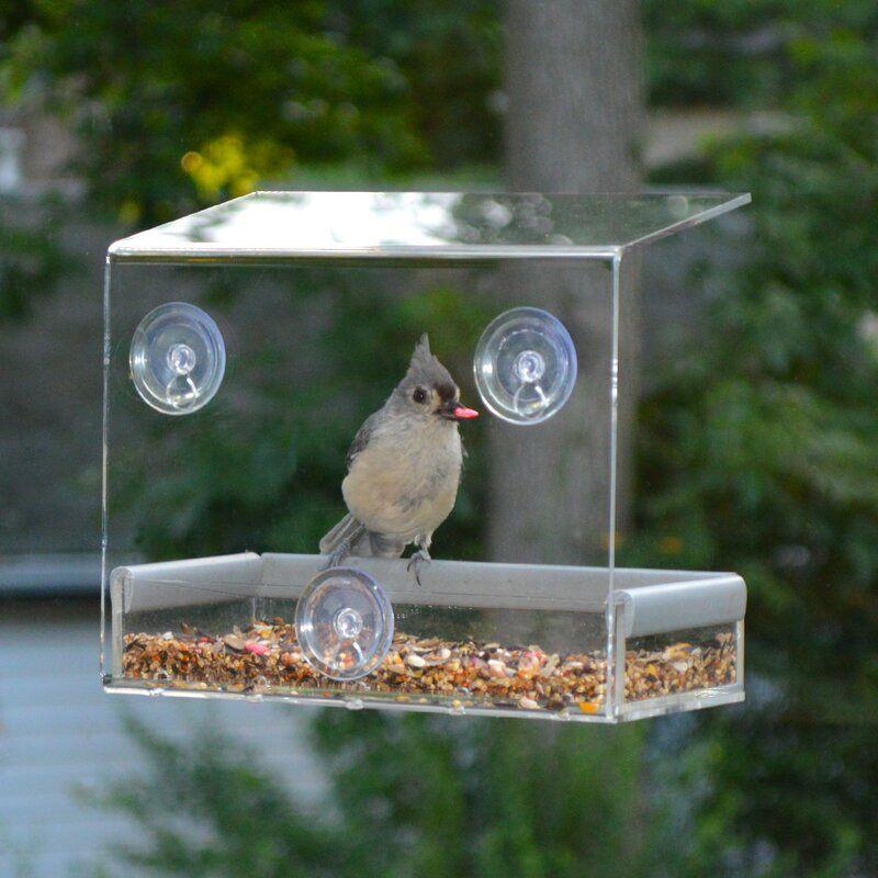 Tranquility Window Tray Bird Feeder Window Bird Feeder Window Mounted Bird Feeder Bird Feeders