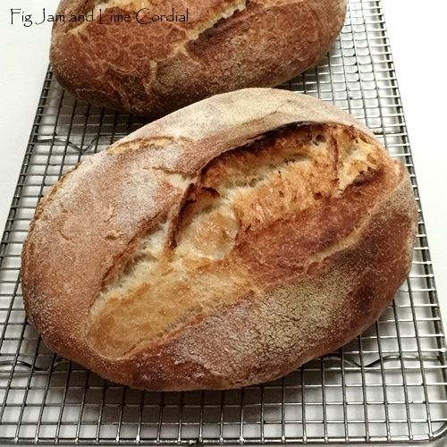 how to make sourdough bread in a bread machine