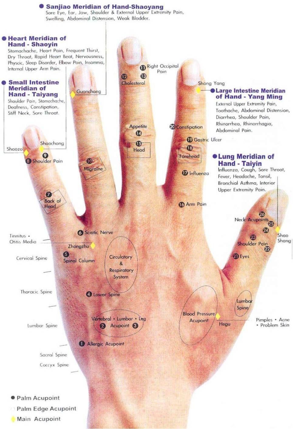 hand accupressure acupressure chart acupressure therapy acupressure massage acupressure points hand [ 965 x 1410 Pixel ]