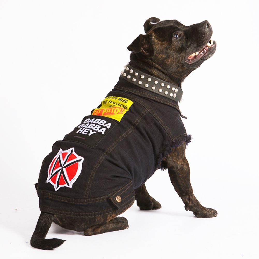 Boy Rocking His Custom Black Dog Battle Jacket Such A Babe Denim