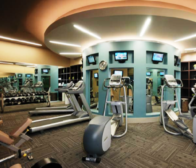 luxury home gym  contact an apartment locator