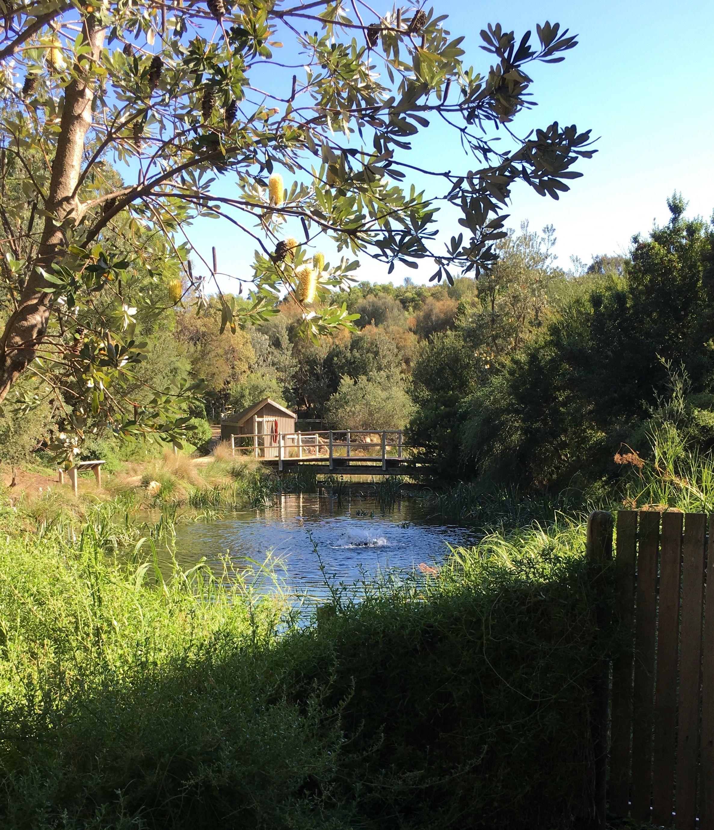 Peninsula Hot Springs Melbourne
