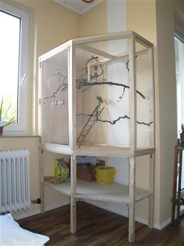 pin von jane wolf auf animals pinterest. Black Bedroom Furniture Sets. Home Design Ideas