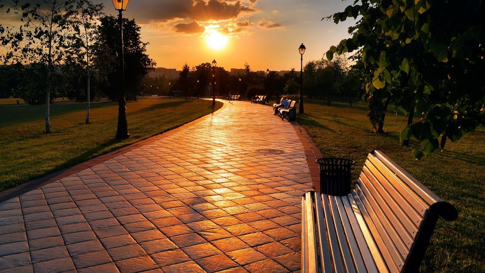 Sunset In Park #7007018