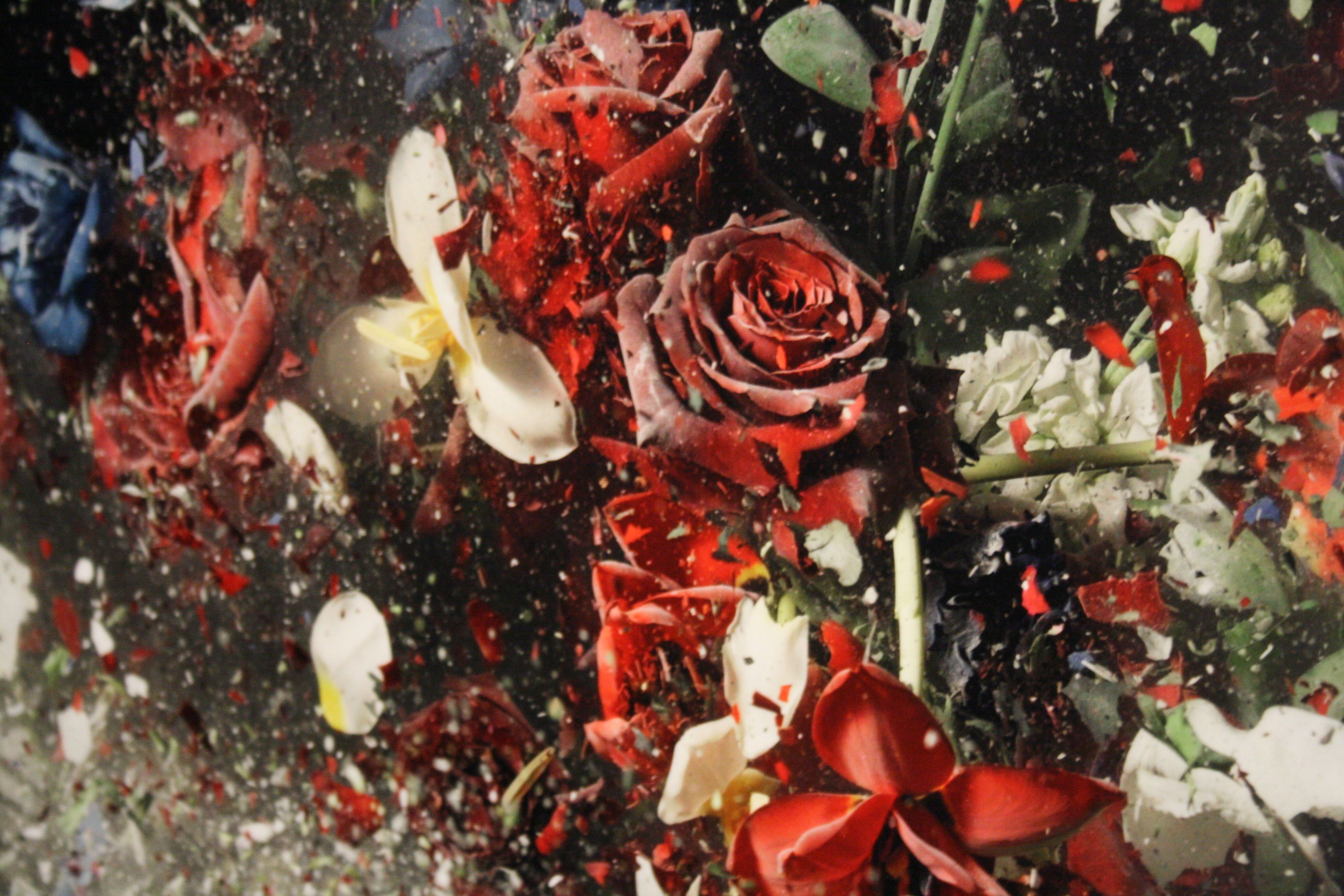 Ori Gersht - just discovered this fantastic  photographer.