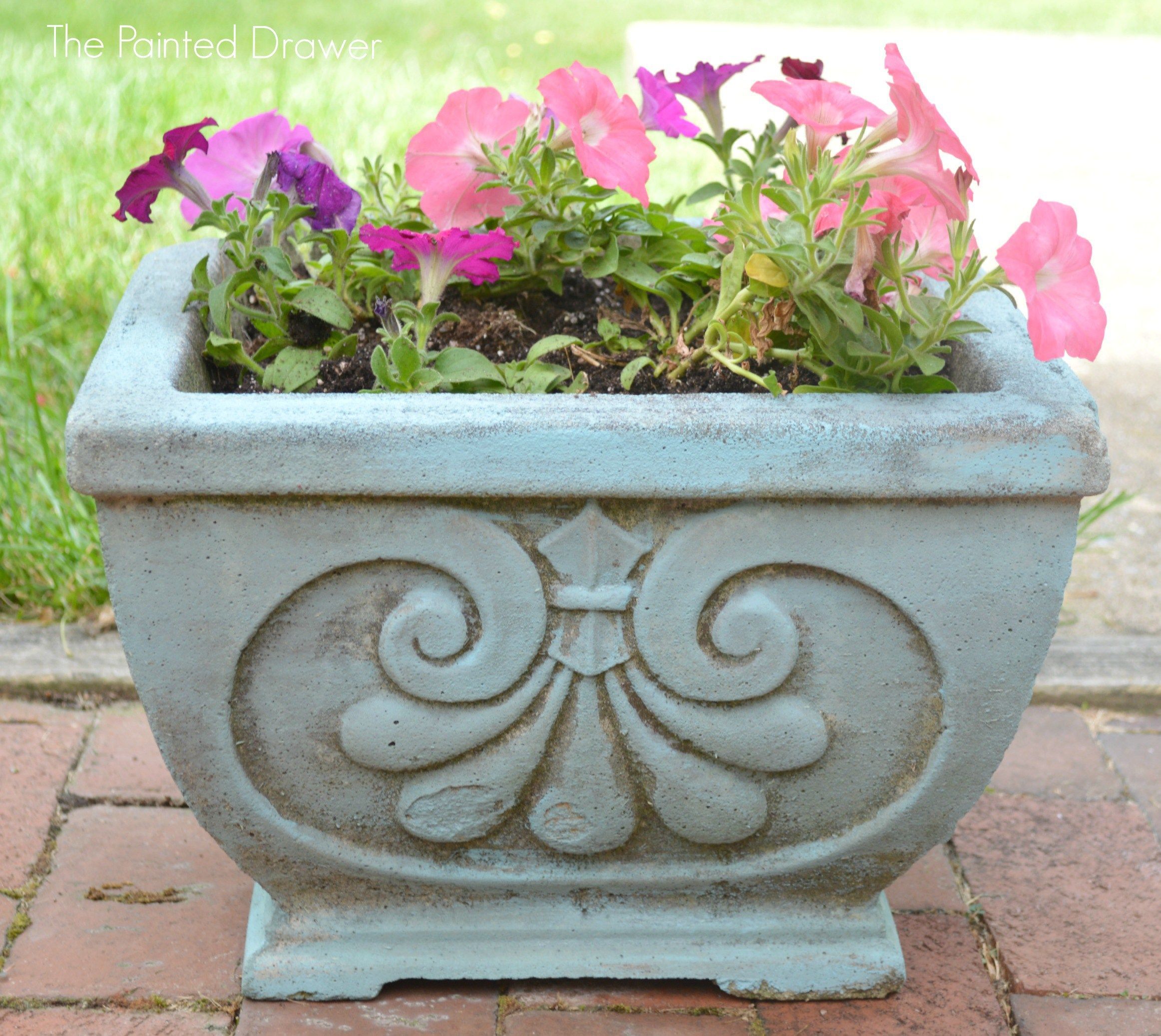 Chalk Paint Concrete Planter DIY thepainteddrawer