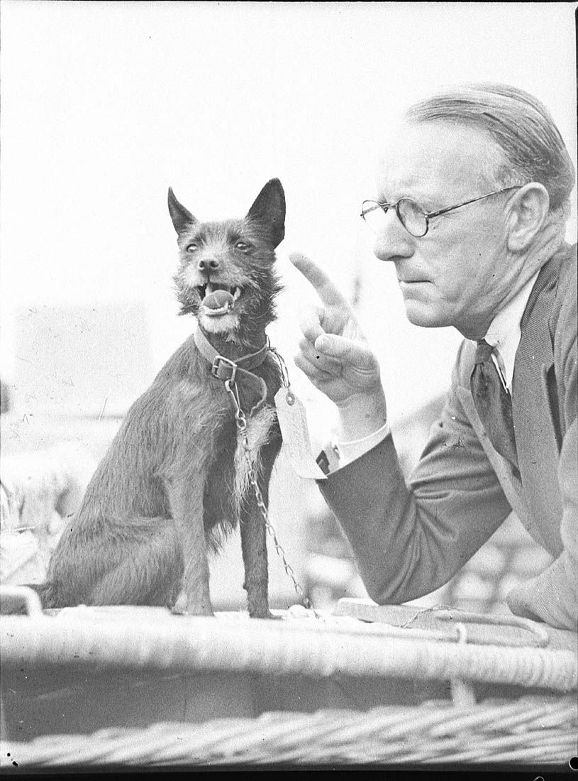 A Man And His Dog Vintage Dog Old Dogs Dog Pictures