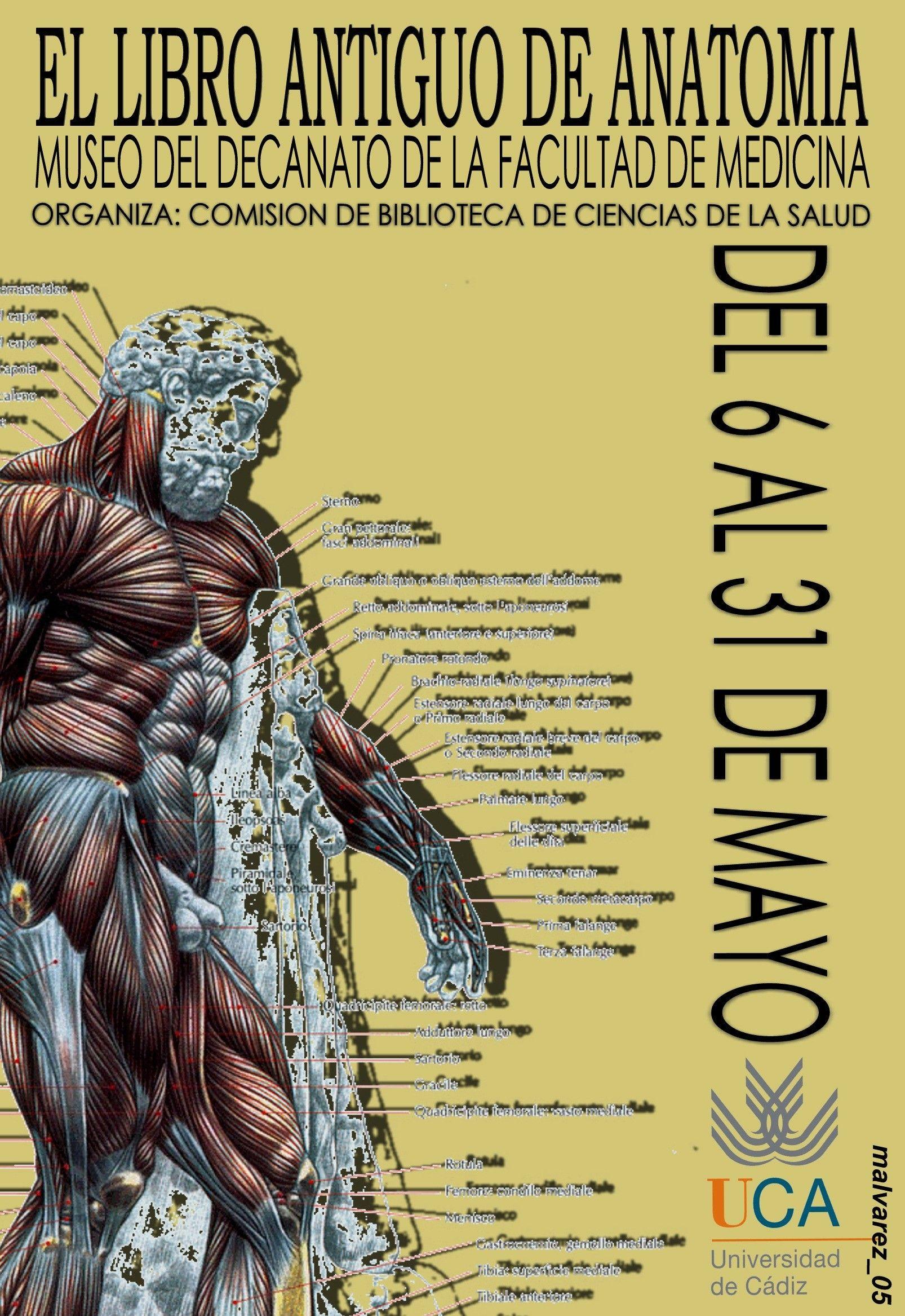 El libro antiguo de Anatomía | Carteles de la Biblioteca | Pinterest ...