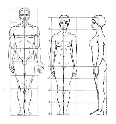 tegne menneskekroppen - Google-søk