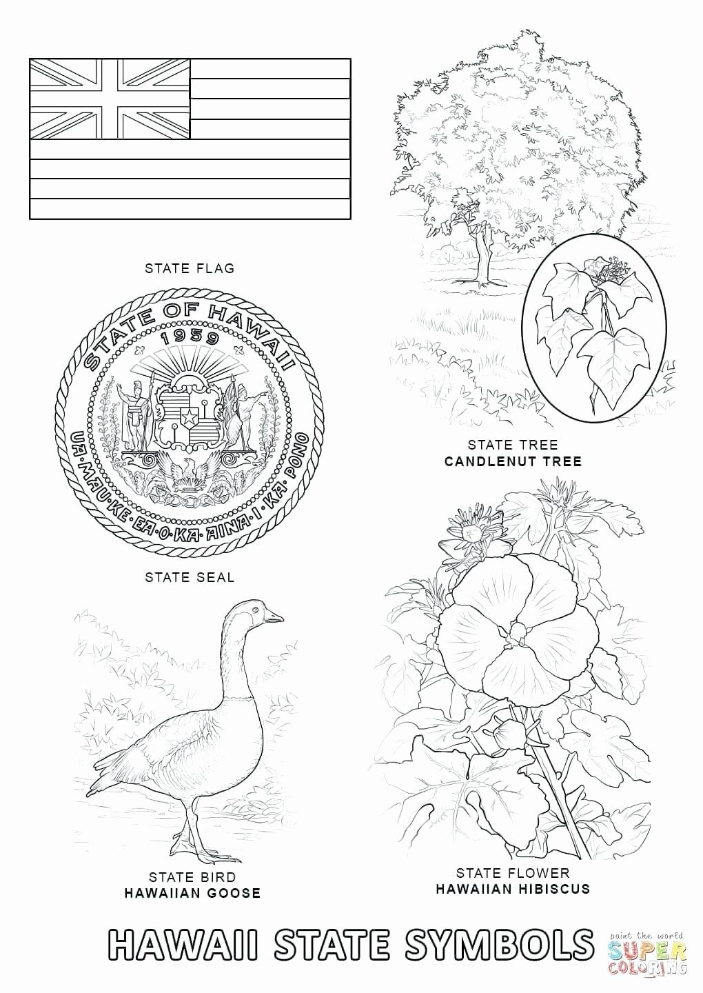 Hawaii State Flag Coloring Page Inspirational Hawaii Flag Coloring
