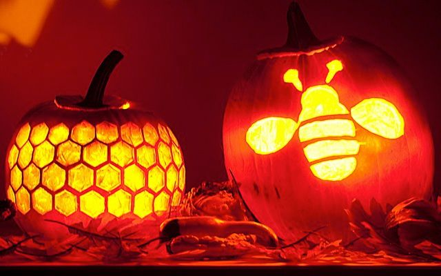 too cute pumpkin carving stencils by sue bee honey bees bees rh pinterest com