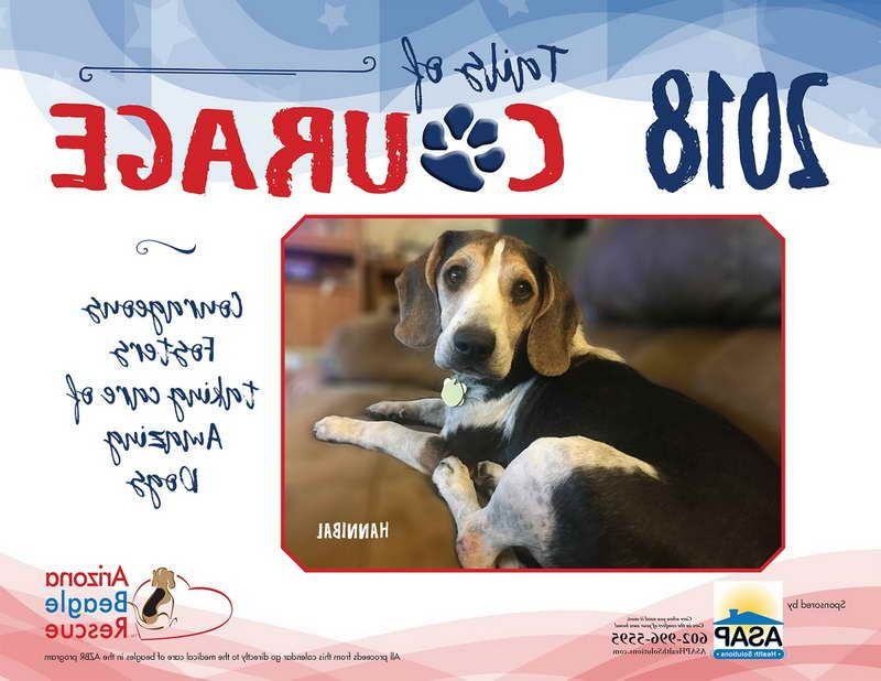 Arizona beagle rescue dengan gambar