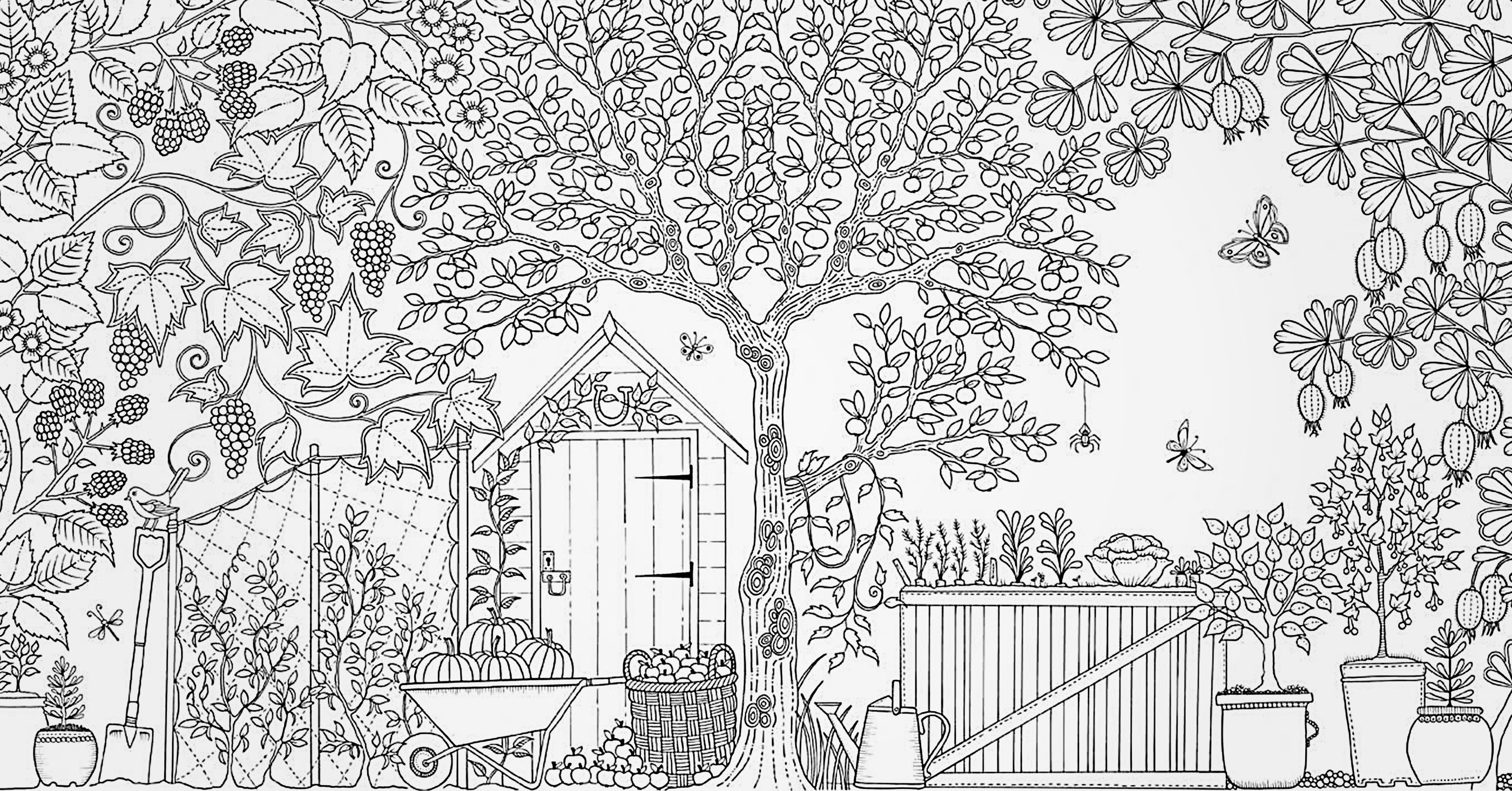 - Secret Garden (With Images) Garden Coloring Pages, Secret Garden