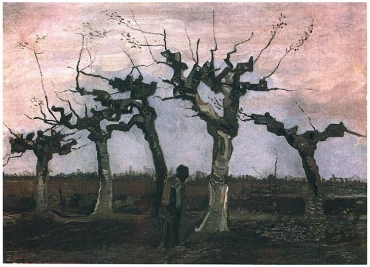 Vincent Van Gogh Landscape With Pollard Willows Painting Oil On Canvas On Panel Nuenen April 1884 Private Van Gogh Landscapes Artist Van Gogh Van Gogh Art