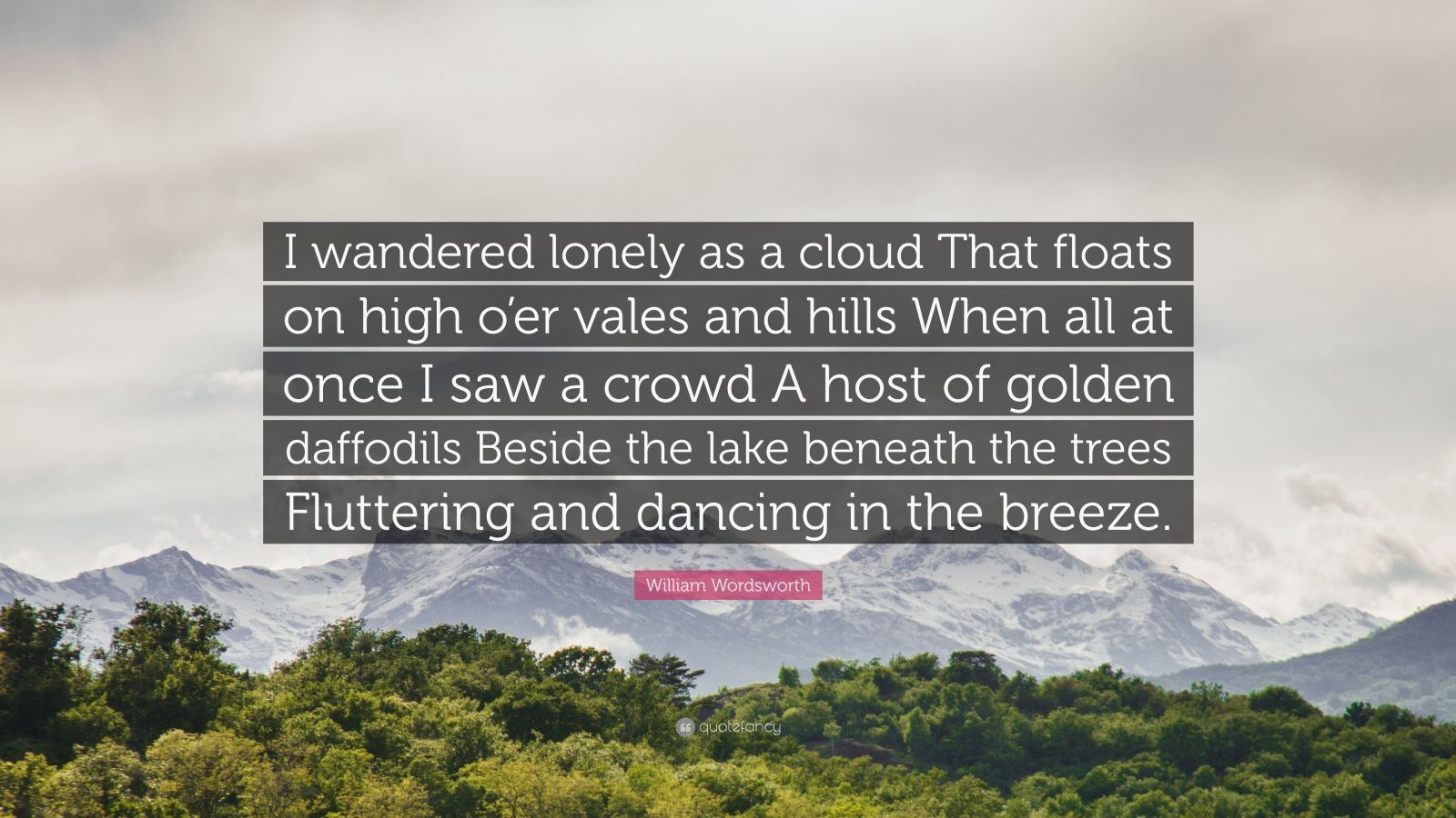 William Wordsworth Quote I Wandered Lonely A Cloud That Float On High O Er Vale And H Positive Attitude Best Inspirational Quotes What The Meaning Of By