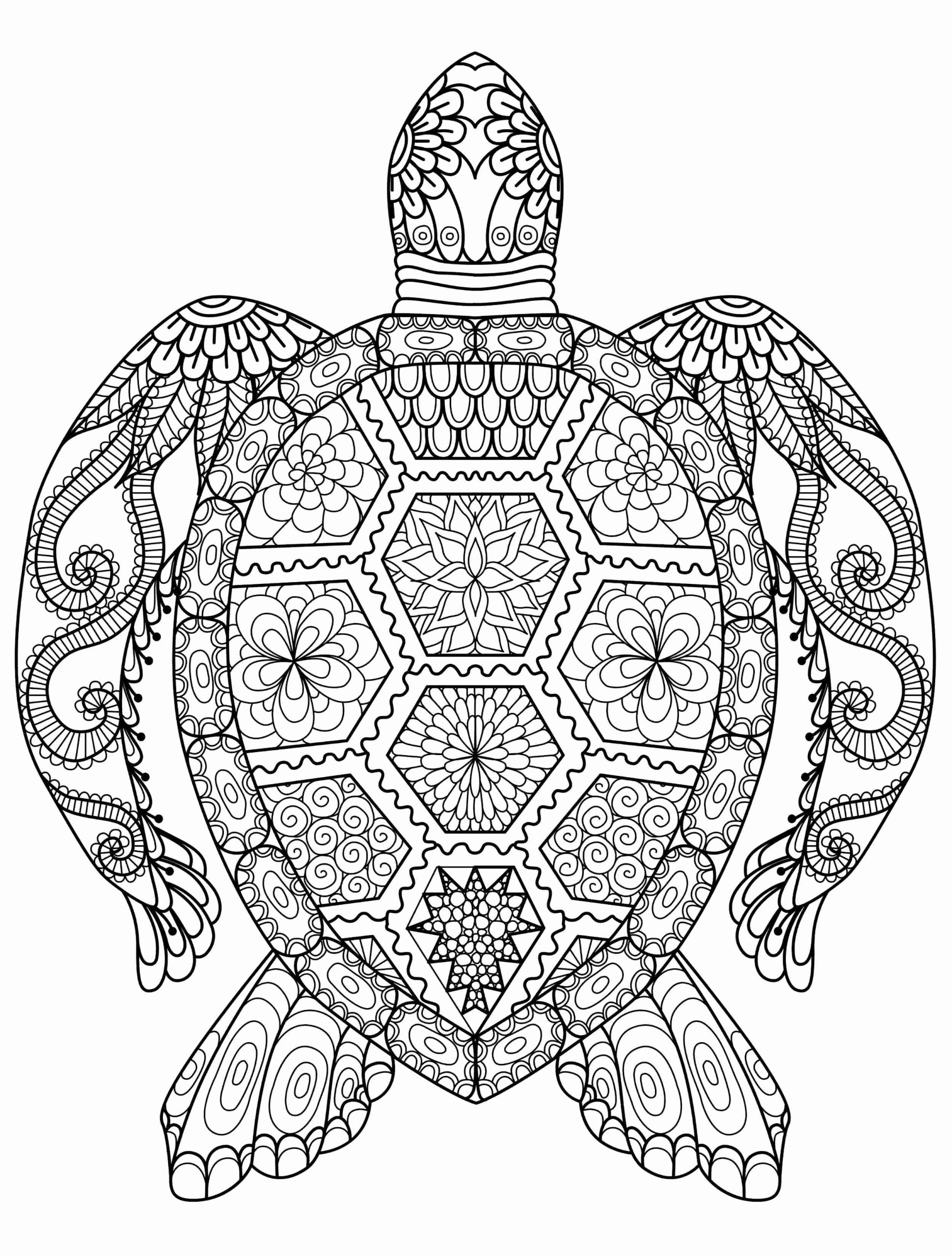 Coloring Pages Of Animals Hard