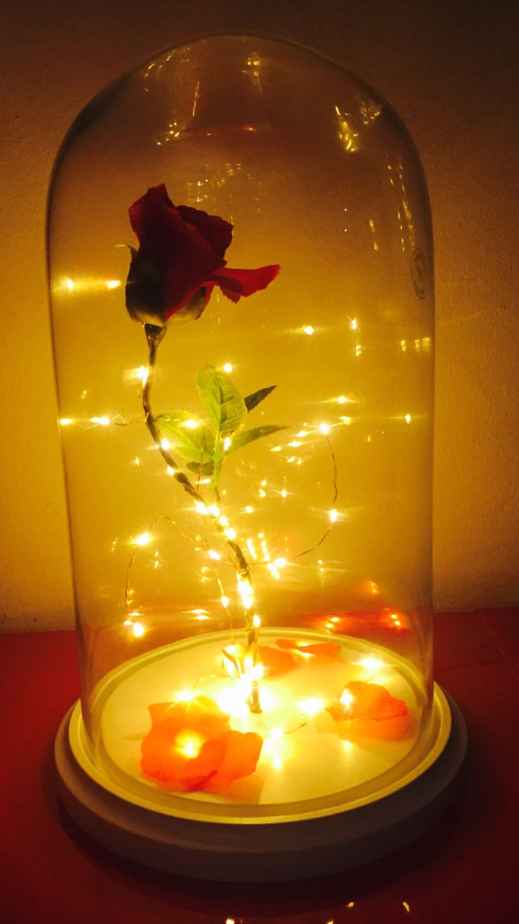My homemade Beauty & The Beast rose lamp! | DIY | Pinterest ...