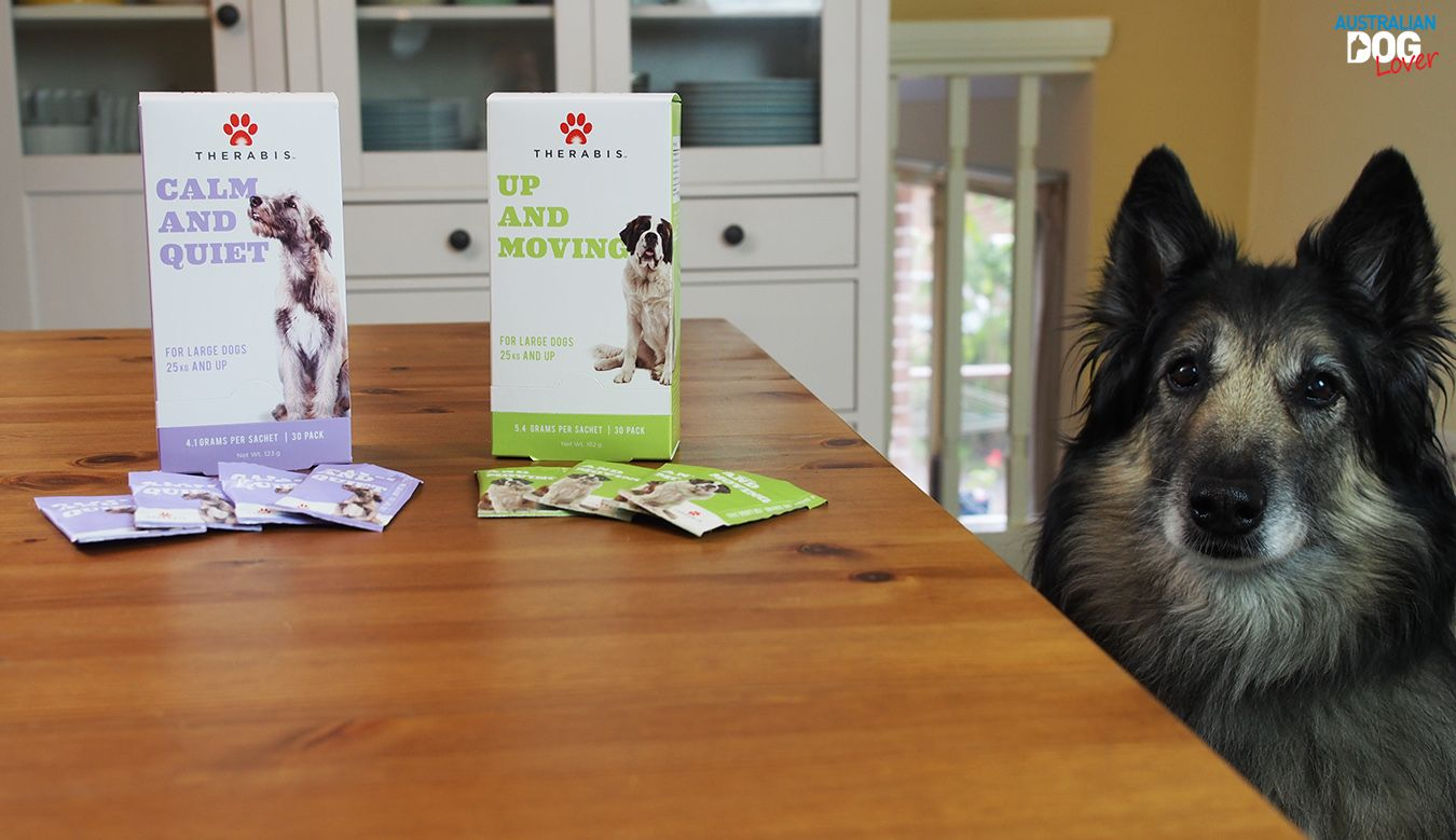 Therabis Up And Moving Dog Supplement Review Australian Dog