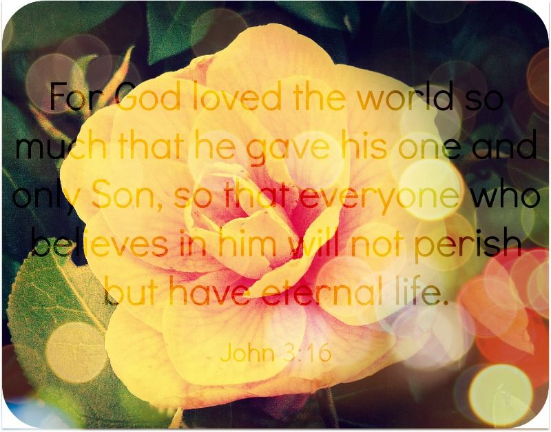 For God loved the world so much that he gave his one and only Son, so that everyone who believes in him will not perish but have eternal life. John 3:16 (NLT)  ///AEThomas