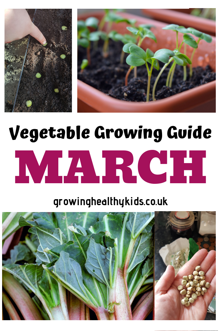 Vegetable Growing Guide For March Growing Vegetables Gardening