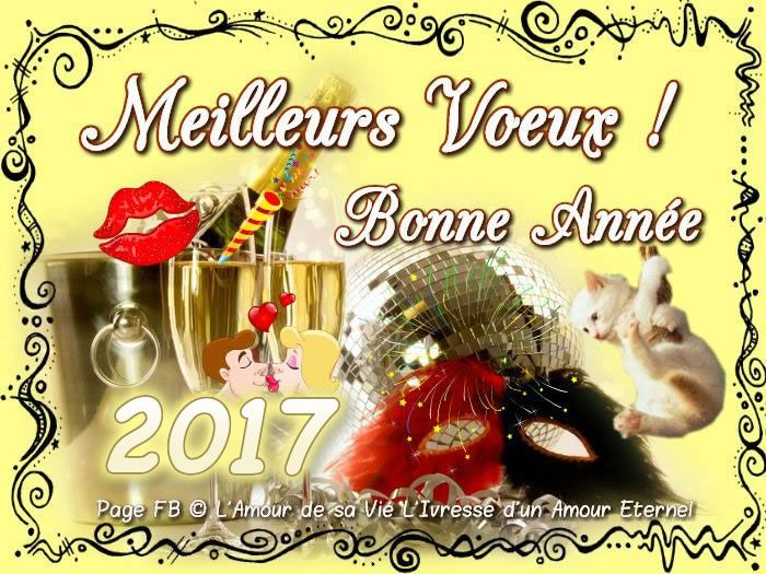 meilleurs voeux bonne ann e 2017 bonneannee chat mignon champagne bisou fete amour nouvel an. Black Bedroom Furniture Sets. Home Design Ideas
