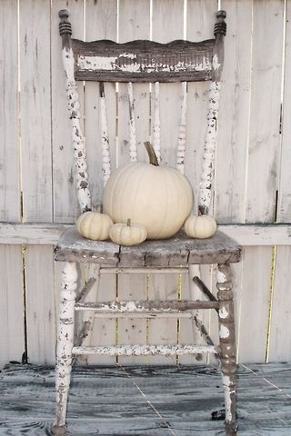 Fall white pumpkins