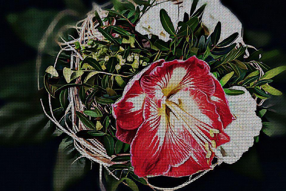 Needlepoint Canvas - Bouquet amaryllis red blossom