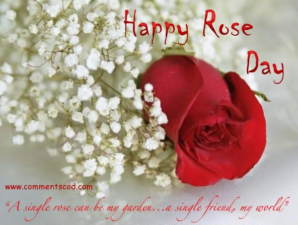 Happy Rose Day Wishes For Girlfriend Love Message For Girlfriend